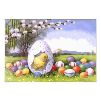 Easter Chick Colored Egg Cotton Photographic Print