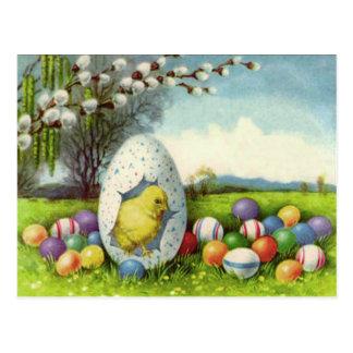 Easter Chick Cotton Colored Egg Landscape Postcard