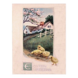 Easter Chick Yard Dogwood Tree Postcard