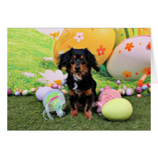 Easter - Chiweenie - Titus Card