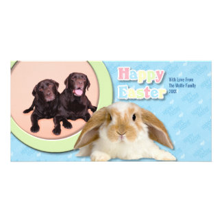 Easter - Chocolate Laberadors Photo Card