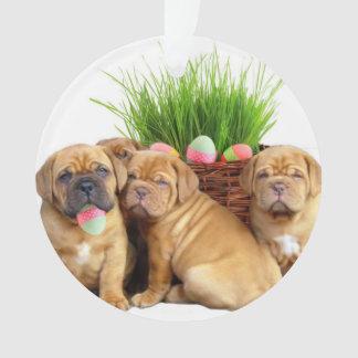 Easter Dogue de Bordeaux dog