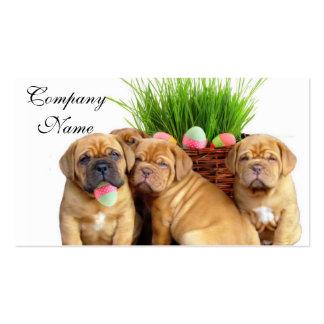 Easter Dogue de Bordeaux pups Business Card