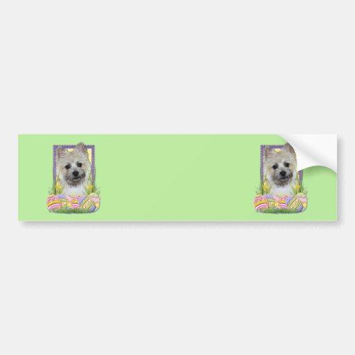 Easter Egg Cookies - Cairn Terrier Bumper Sticker