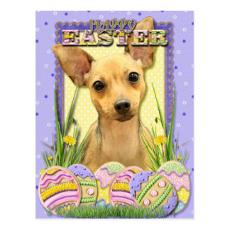 Easter Egg Cookies - Chihuahua - Daisy Postcard