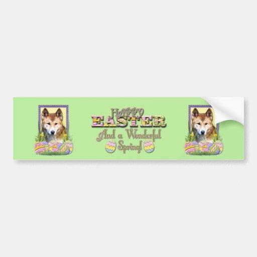 Easter Egg Cookies - Dingo Bumper Stickers