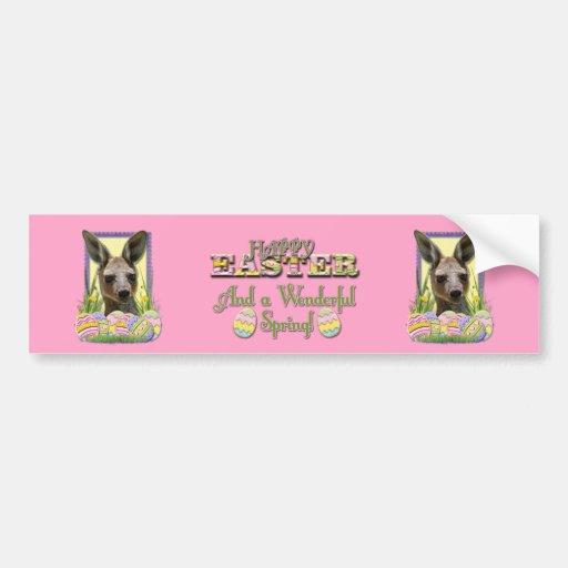 Easter Egg Cookies - Kangaroo Bumper Stickers