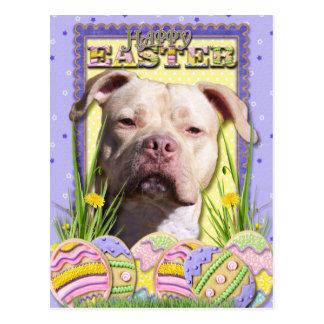Easter Egg Cookies - Pitbull - JerseyGirl Postcard