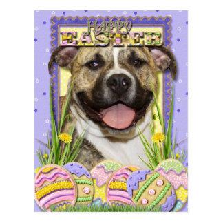 Easter Egg Cookies - Pitbull - Tigger Postcard