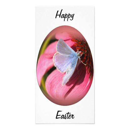 easter egg gossamer-winged butterfly photo greeting card