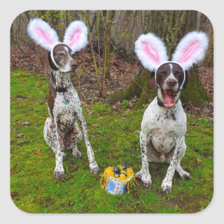 Easter Egg Hunt and Party Dogs Round Stickers