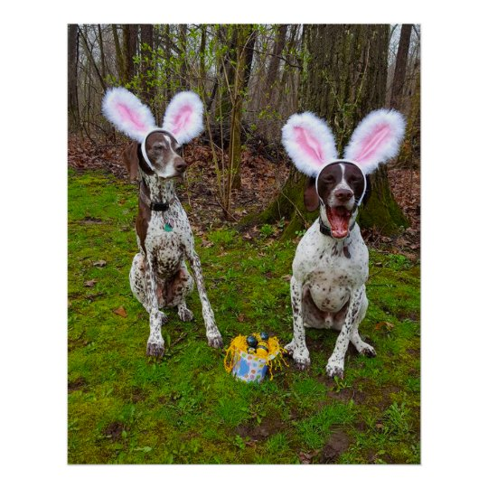 Easter Egg Hunt and Party Dogs Value Poster