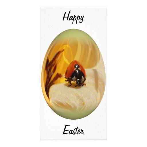 easter egg ladybug photo card template