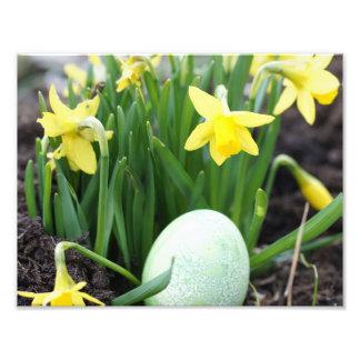 Easter egg photo print