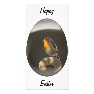 easter egg robin custom photo card