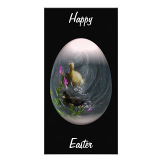 easter egg with ducklings custom photo card