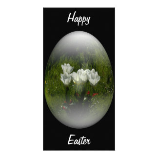 easter egg with white tulips photo greeting card