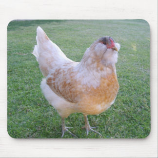 Easter Egger Chicken Mousepad