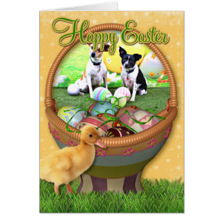 Easter Fox Terrier - Sadie and Baboo Card