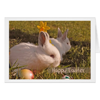 Easter greeting card Happy Easter Bunny White