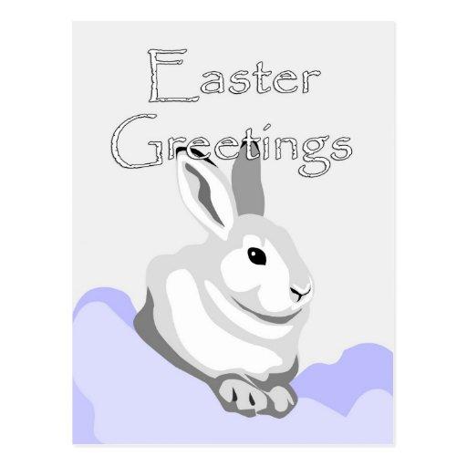 Easter Greetings Gray Bunny Postcard