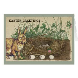 Easter Greetings rabbit, eggs, nest, grass, clover Card
