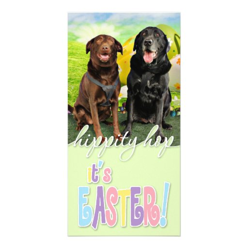 Easter - Labrador - Jack and Diane Photo Greeting Card