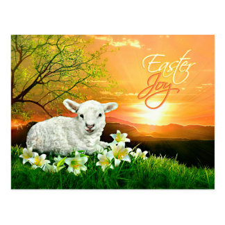 Easter Lamb and Sunrise with Easter Lilies Postcard