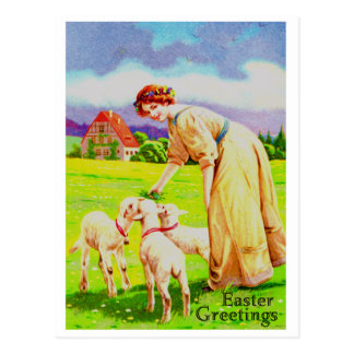 Easter Lambs Post Card