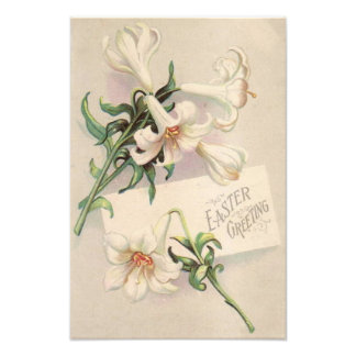 Easter Lily Art Photo