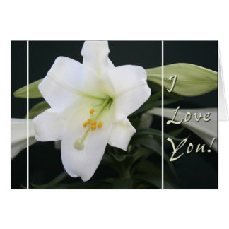 "Easter Lily ""I Love you"" greeting card"