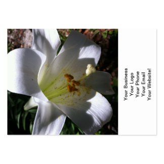 Easter Lily Shadow Pack Of Chubby Business Cards
