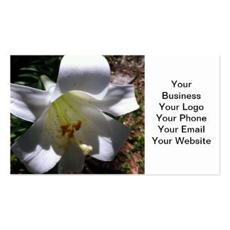 Easter Lily Shadow Pack Of Standard Business Cards