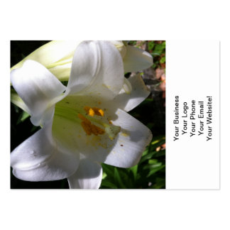 Easter Lily White Pack Of Chubby Business Cards