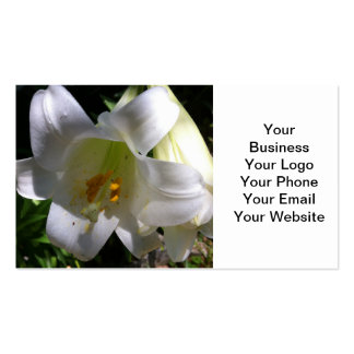 Easter Lily White Pack Of Standard Business Cards