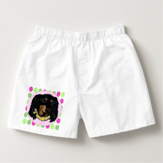 Easter Long Haired Black Dachshund Boxers