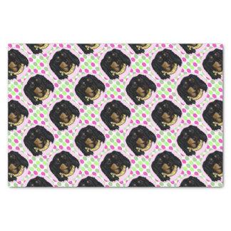 Easter Long Haired Black Dachshund Tissue Paper