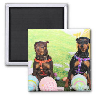Easter - Min Pin - Zena and Gidget Square Magnet
