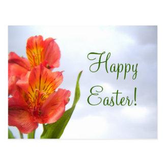 Easter Orange Lily Postcard