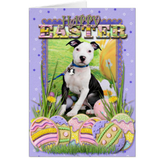 Easter - Pitbull  - Gunner Greeting Card