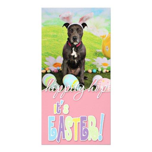 Easter - Pitbull  - Puddin Head Photo Greeting Card