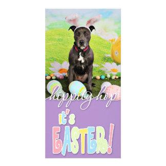 Easter - Pitbull  - Puddin Head Photo Card