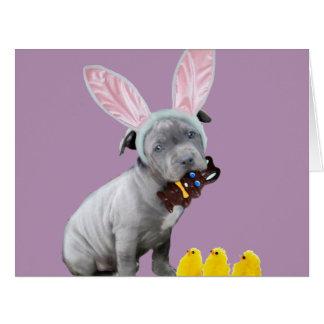 Easter Pitbull puppy dog Big Greeting Card