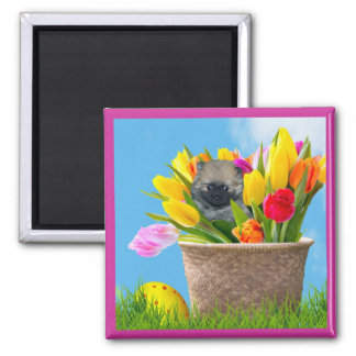 Easter Pomeranian puppy in Tulips square magnet