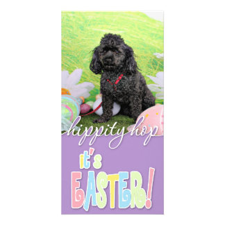 Easter - Poodle - Junior Photo Card