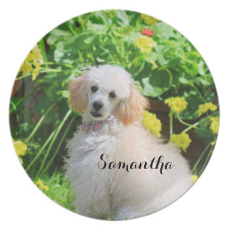 Easter poodle puppy personalized plate