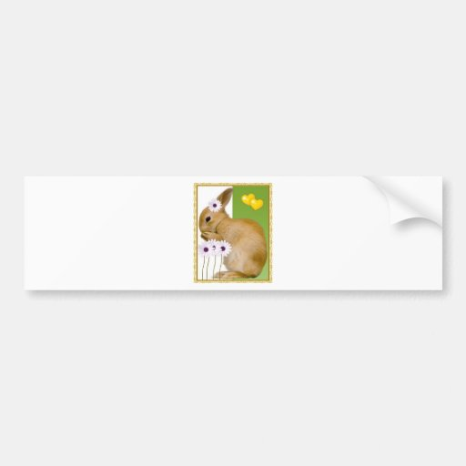 easter rabbit bumper stickers