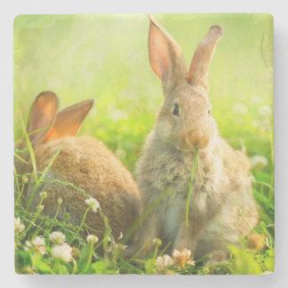 Easter Rabbits Stone Coaster