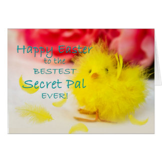 Easter-Secret Pal - Chick Card