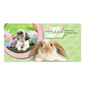 Easter - Shih Tzu - Sophie Photo Card Template